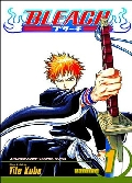 Bleach Graphic Novel Vol 1 200pgs
